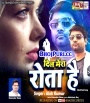 Tere Pyar Me Dil Mera Rota Hai.mp3 Alok Kumar New Bhojpuri Full Movie Mp3 Song Dj Remix Gana Video Download