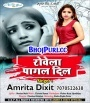 Rowela Pagal Dil (Amrita Dixit) Bhojpuri New Sad Song Gana 2018 Amrita Dixit Bhojpuri Full Movie Mp3 Song Dj Remix Gana Video Download