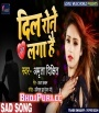 Dil Rone Laga (2019) Amrita Dixit Bhojpuri Sad Mp3 Song Download Amrita Dixit Bhojpuri Full Movie Mp3 Song Dj Remix Gana Video Download