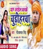 Yaar Aaile Ban Ke Chudiharwa (Gana) Neelkamal Singh Neelkamal Singh Bhojpuri Full Movie Mp3 Song Dj Remix Gana Video Download
