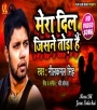 Mera Dil Jisne Toda Hai (Neelkamal Singh) Neelkamal Singh Bhojpuri Full Movie Mp3 Song Dj Remix Gana Video Download
