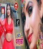 Hay Re Hamar Sona.mp4 Nagendra Ujala New Bhojpuri Full Movie Mp3 Song Dj Remix Gana Video Download